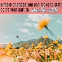Simple Changes You Can Make To Start Doing Your Part in Saving the Earth- RIGHT NOW!